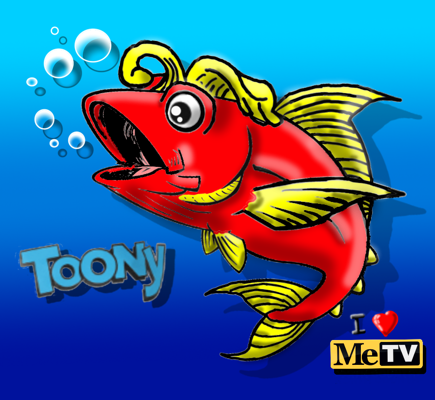 Fish are beautiful  people! I get such a laugh from Toony. He helps me greet the day.