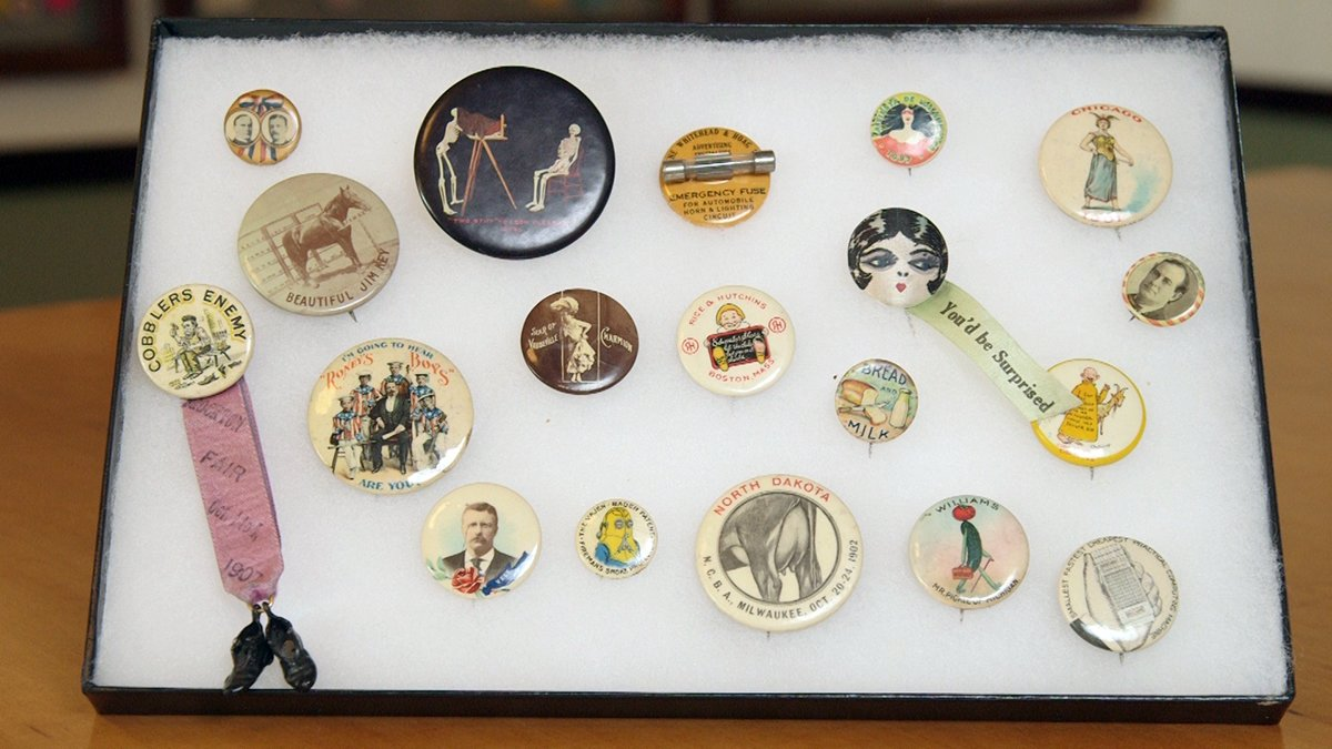 Pin Back Button Parrots by Muncie Makers Market